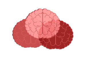 innvovacion en el aula inteligencias multiples