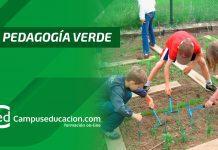 pedagogía verde
