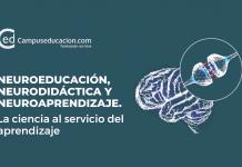 neuroeducación neurociencia neuroaprendizaje