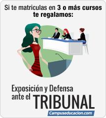 Curso de Exposición y Defensa ante el Tribunal